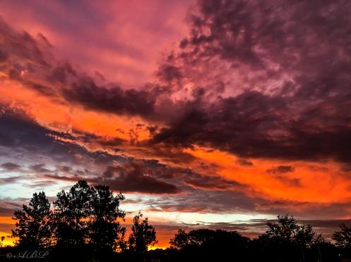 amazing sunset Newcastle