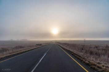 early morning mist and frost speonkop road