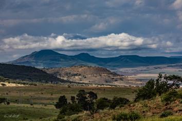 landscape outside Newcastle KZN