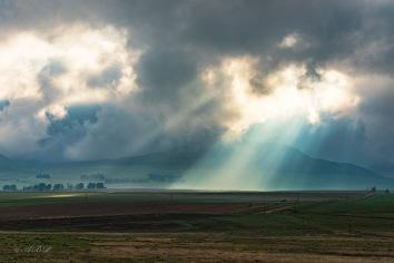 Majestic rays of rising sun near Memel Freestate