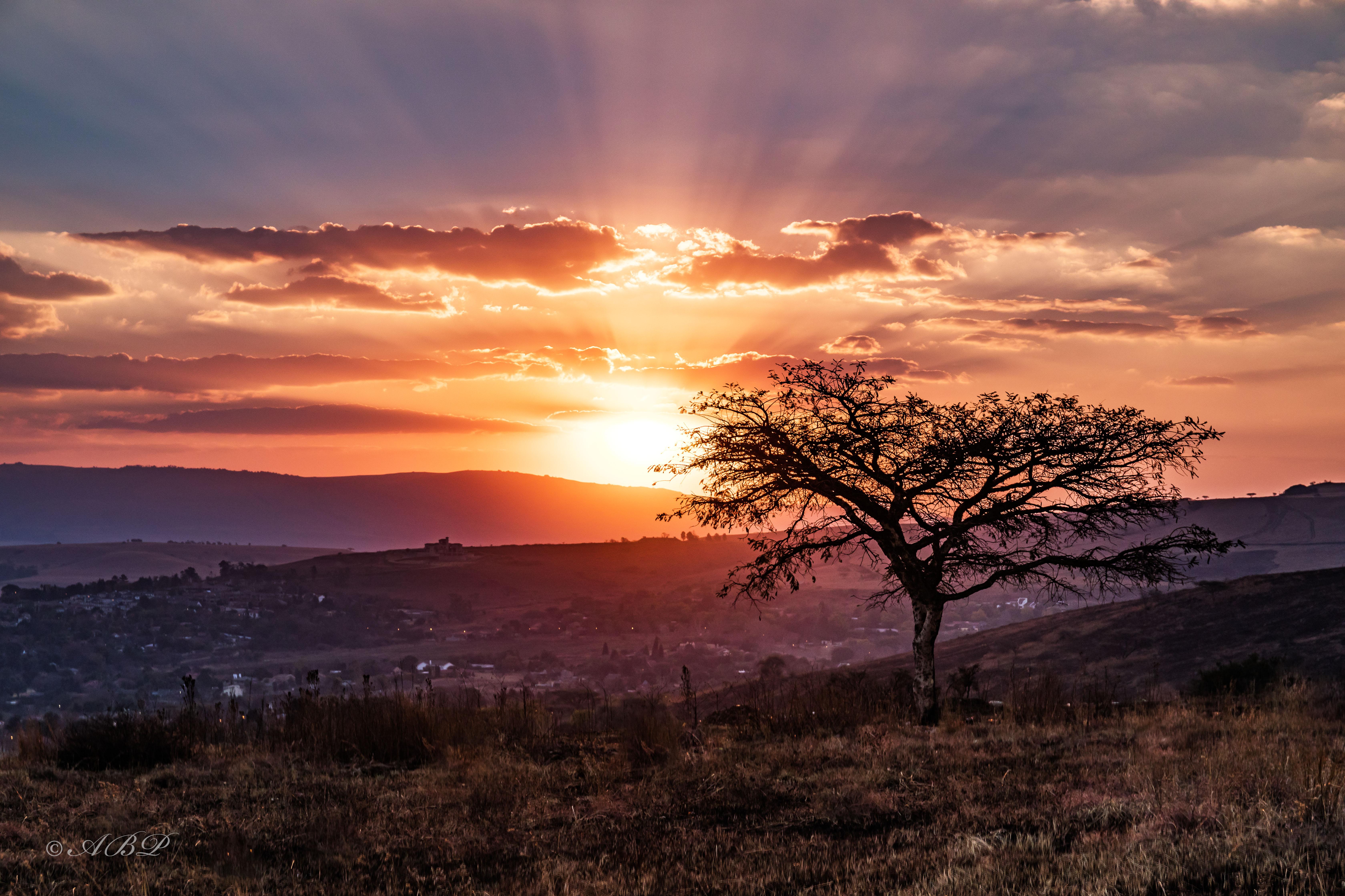 sunset newcastle 11