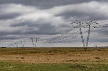 pylons and grasslands